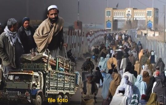 Rich result son google SERP when searching for 'Afghan refugees'