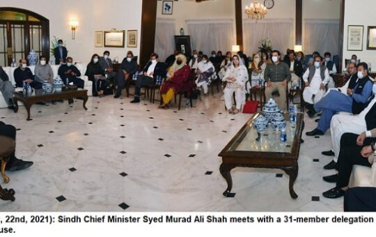 Rich result son google SERP when searching for 'CM sindh - Punjab MPAs'