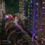 Pakistan celebrates Eid Milad un Nabi with religious zeal
